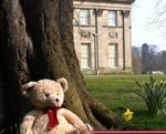 The Tatton Teddy Hunt