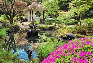 Japanese garden in the spring - George Littler