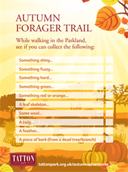autumn forager trail image