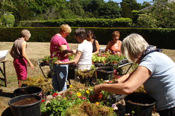 container planting course - Bob Buckley