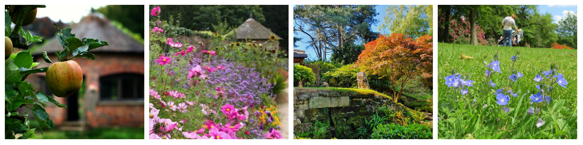 garden collage summer highlights