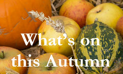 whats-on-this-autumn-banner