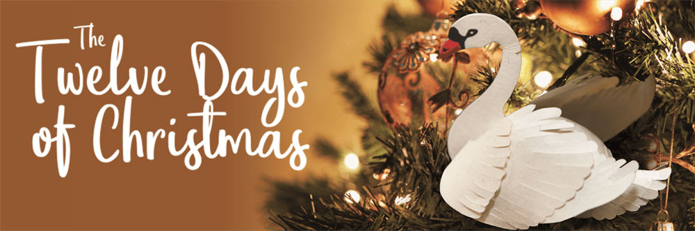 twelve-days-of-christmas-banner