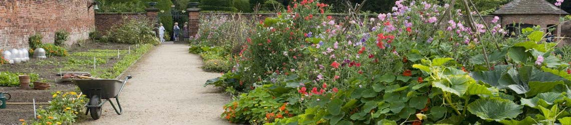 tattons-walled-kitchen-garden